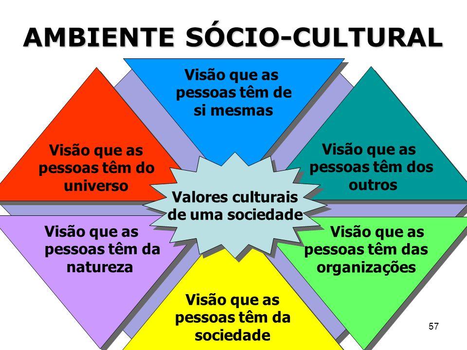 57 Visão que as pessoas têm das organizações Visão que as pessoas têm da natureza Visão que as pessoas têm de si mesmas Visão que as pessoas têm da so
