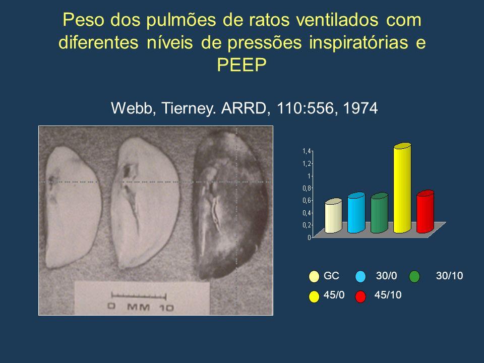 Peso dos pulmões de ratos ventilados com diferentes níveis de pressões inspiratórias e PEEP Webb, Tierney. ARRD, 110:556, 1974 GC 30/0 30/10 45/0 45/1