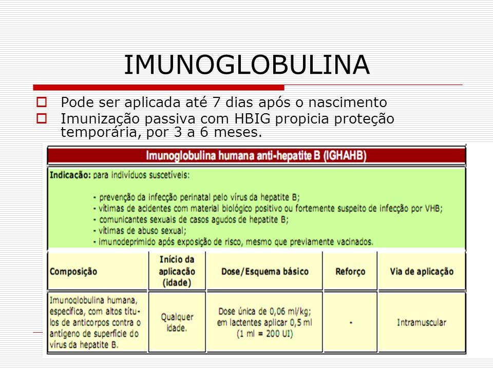 IMUNOGLOBULINA Pode ser aplicada até 7 dias após o nascimento Imunização passiva com HBIG propicia proteção temporária, por 3 a 6 meses.