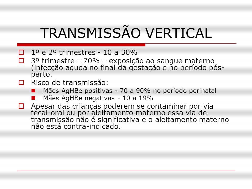 TRANSMISSÃO VERTICAL Situação sorológica materna: HBsAg reagente, HBeAg não reagente 20% infecção HBsAg reagente, HBeAg reagente 70 a 90% infecção (taxa de cronificação superior a 90%) HBsAg pode ser detectado no leite materno de mães HBsAg positivas Autores chamam atenção para a necessidade de rastreamento na gestante para detectar AgHBs positivos (portadores crônicos assintomáticos) para aconselhamento e indicação de imunoprofilaxia, para HVB nos seus bebês.