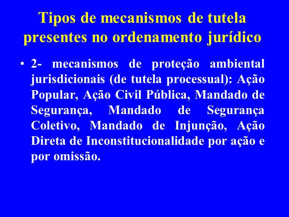Tipos de mecanismos de tutela presentes no ordenamento jurídico 2- mecanismos de proteção ambiental jurisdicionais (de tutela processual): Ação Popula