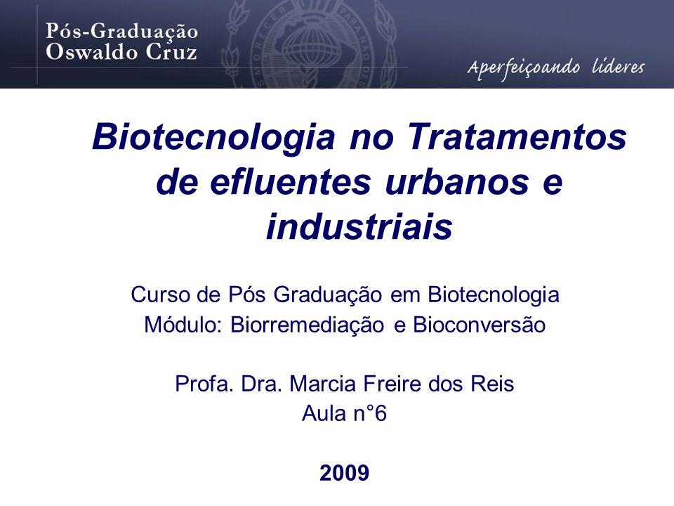 Biotecnologia no Tratamentos de efluentes urbanos e industriais Curso de Pós Graduação em Biotecnologia Módulo: Biorremediação e Bioconversão Profa. D