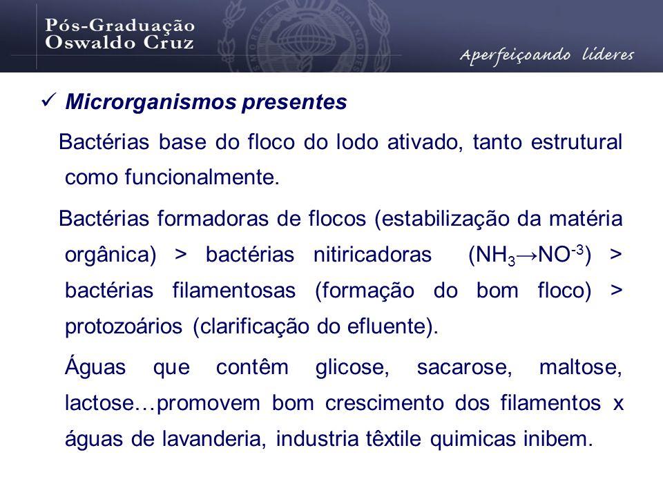 Microrganismos presentes Bactérias base do floco do lodo ativado, tanto estrutural como funcionalmente. Bactérias formadoras de flocos (estabilização