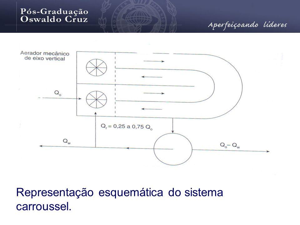 Representação esquemática do sistema carroussel.