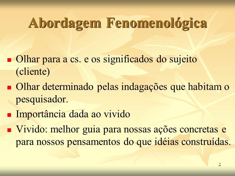 2 Abordagem Fenomenológica Olhar para a cs. e os significados do sujeito (cliente) Olhar determinado pelas indagações que habitam o pesquisador. Impor