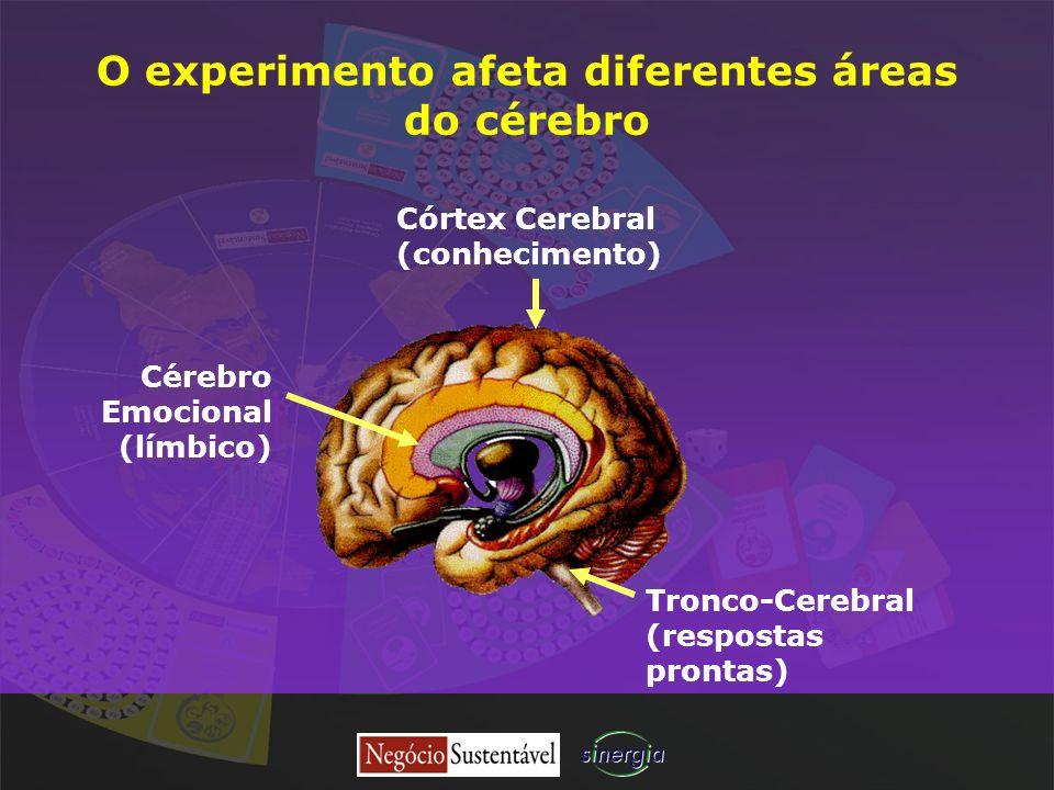 O experimento afeta diferentes áreas do cérebro Córtex Cerebral (conhecimento) Tronco-Cerebral (respostas prontas) Cérebro Emocional (límbico)