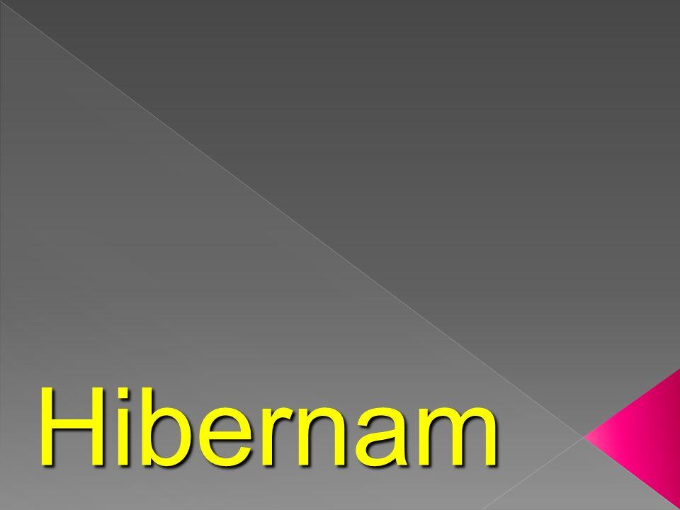 A. Hibernam B. Migram C. Estivam O que fazem alguns animais durante o Inverno?