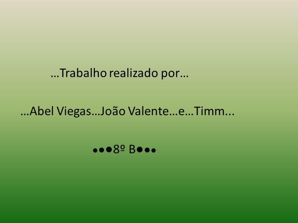 …Trabalho realizado por… …Abel Viegas…João Valente…e…Timm... 8º B