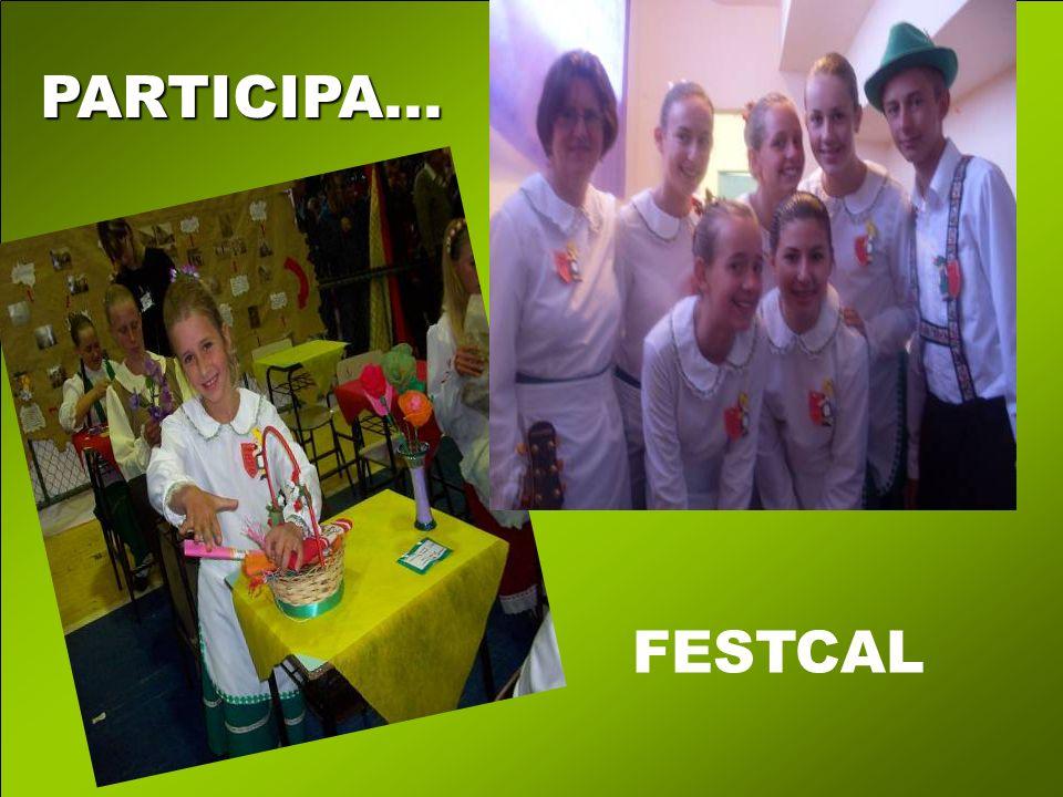 PARTICIPA... FESTCAL
