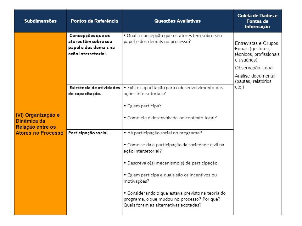 SubdimensõesPontos de ReferênciaQuestões Avaliativas Coleta de Dados e Fontes de Informação (VI) Organização e Dinâmica da Relação entre os Atores no