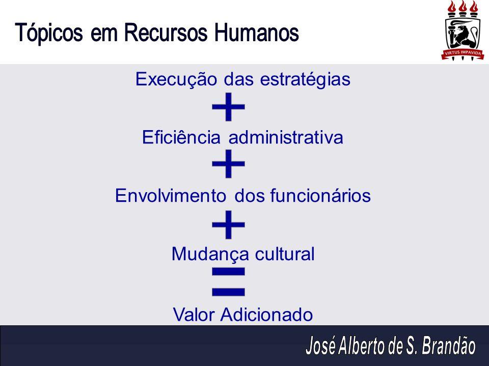 Execução das estratégias Eficiência administrativa Envolvimento dos funcionários Mudança cultural Valor Adicionado