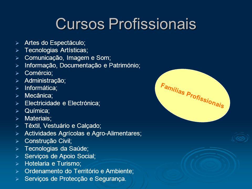 Cursos Profissionais Artes do Espectáculo; Tecnologias Artísticas; Comunicação, Imagem e Som; Informação, Documentação e Património; Comércio; Adminis