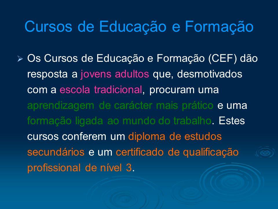 Cursos de Educação e Formação Os Cursos de Educação e Formação (CEF) dão resposta a jovens adultos que, desmotivados com a escola tradicional, procura