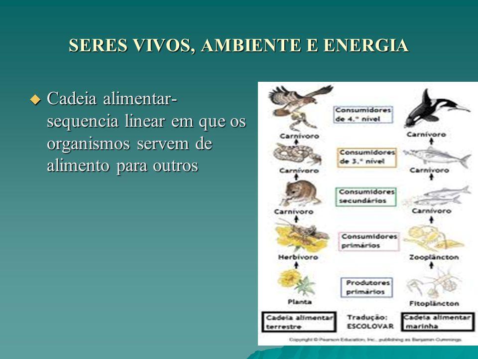 SERES VIVOS, AMBIENTE E ENERGIA Cadeia alimentar- sequencia linear em que os organismos servem de alimento para outros Cadeia alimentar- sequencia lin