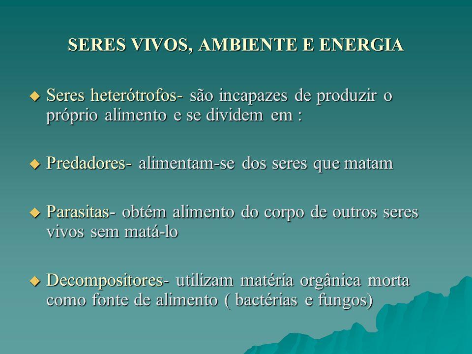 SERES VIVOS, AMBIENTE E ENERGIA Seres heterótrofos- são incapazes de produzir o próprio alimento e se dividem em : Seres heterótrofos- são incapazes d