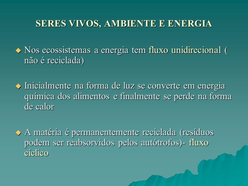 SERES VIVOS, AMBIENTE E ENERGIA Nos ecossistemas a energia tem fluxo unidirecional ( não é reciclada) Nos ecossistemas a energia tem fluxo unidirecion