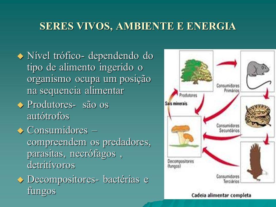 SERES VIVOS, AMBIENTE E ENERGIA Nível trófico- dependendo do tipo de alimento ingerido o organismo ocupa um posição na sequencia alimentar Nível trófi