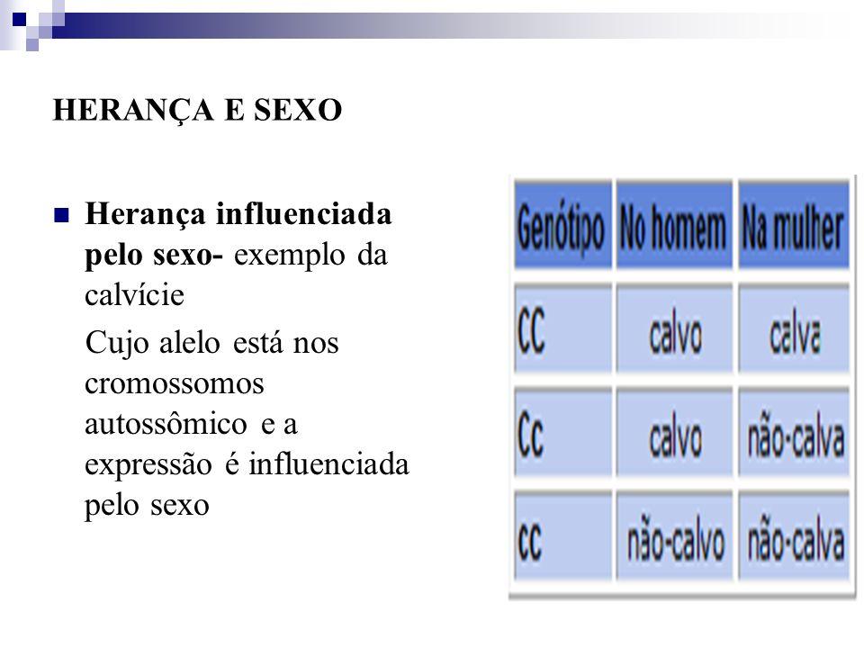 HERANÇA E SEXO Herança influenciada pelo sexo- exemplo da calvície Cujo alelo está nos cromossomos autossômico e a expressão é influenciada pelo sexo