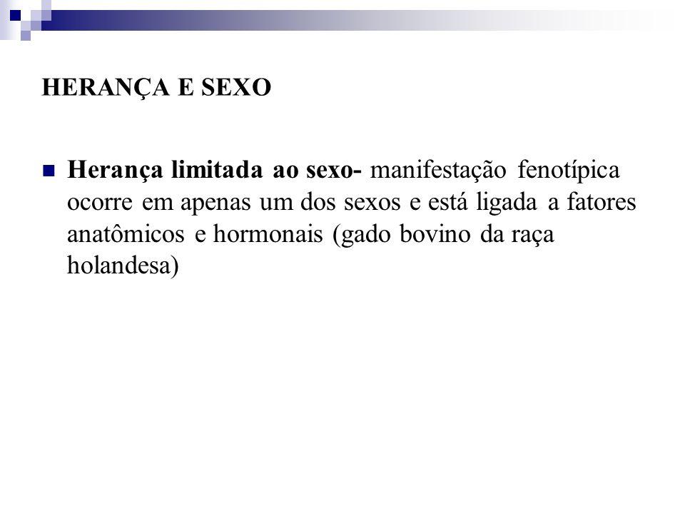 HERANÇA E SEXO Herança limitada ao sexo- manifestação fenotípica ocorre em apenas um dos sexos e está ligada a fatores anatômicos e hormonais (gado bo