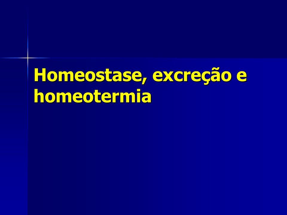 Homeostase, excreção e homeotermia