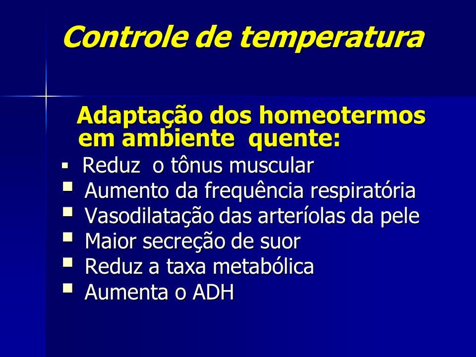 Controle de temperatura Adaptação dos homeotermos em ambiente quente: Adaptação dos homeotermos em ambiente quente: Reduz o tônus muscular Reduz o tôn