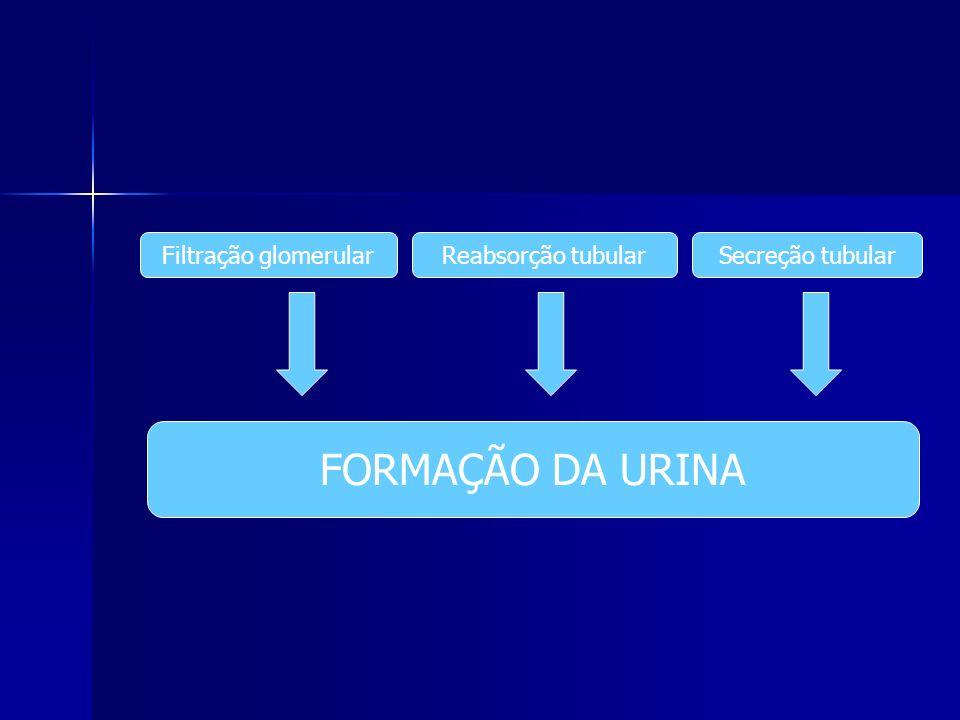 Filtração glomerularReabsorção tubularSecreção tubular FORMAÇÃO DA URINA