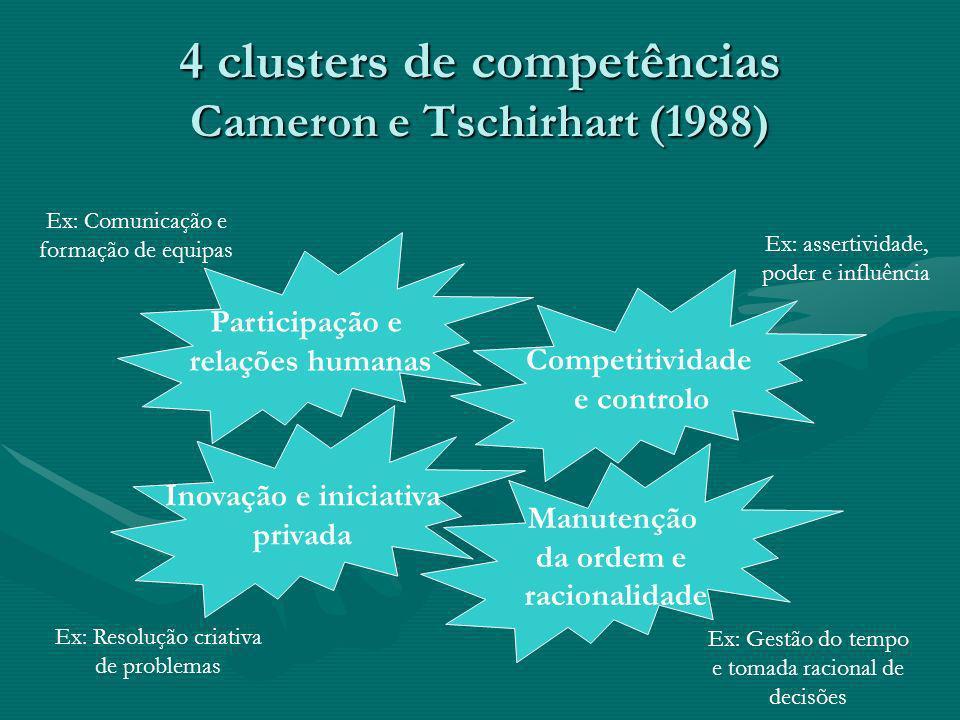 4 clusters de competências Cameron e Tschirhart (1988) Participação e relações humanas Competitividade e controlo Inovação e iniciativa privada Manute