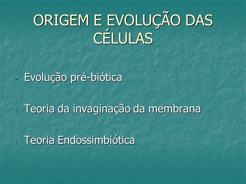 ORIGEM E EVOLUÇÃO DAS CÉLULAS - Evolução pré-biótica - Teoria da invaginação da membrana - Teoria Endossimbiótica