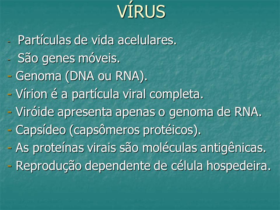 VÍRUS - Partículas de vida acelulares. - São genes móveis. - Genoma (DNA ou RNA). - Vírion é a partícula viral completa. - Viróide apresenta apenas o