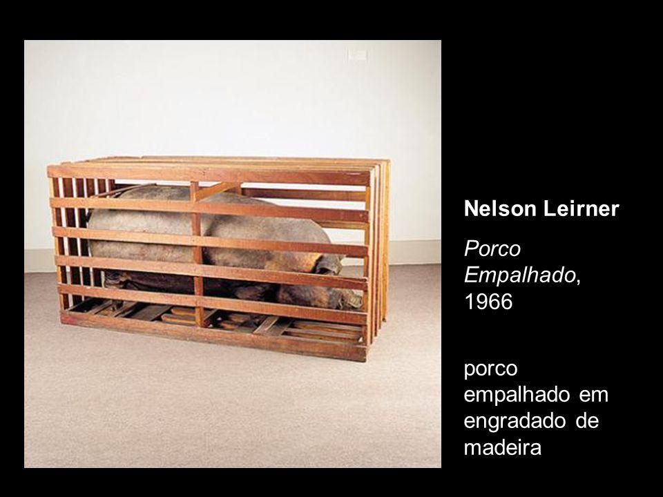 Nelson Leirner Porco Empalhado, 1966 porco empalhado em engradado de madeira