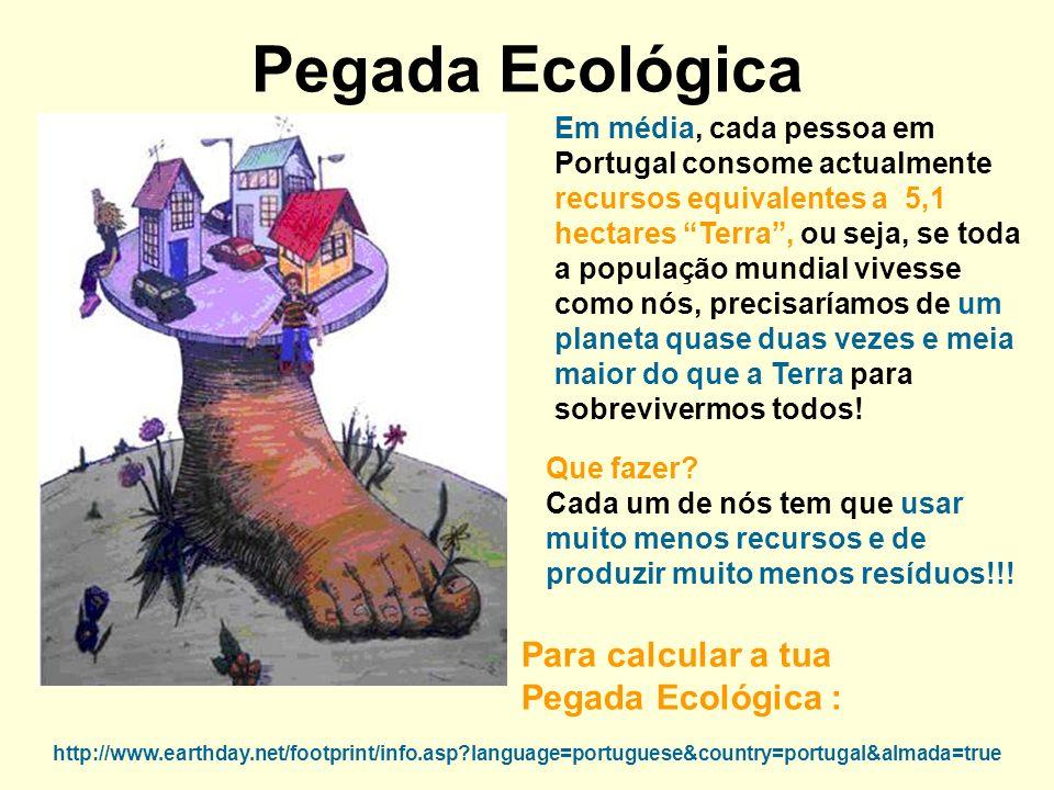 Pegada Ecológica Em média, cada pessoa em Portugal consome actualmente recursos equivalentes a 5,1 hectares Terra, ou seja, se toda a população mundia