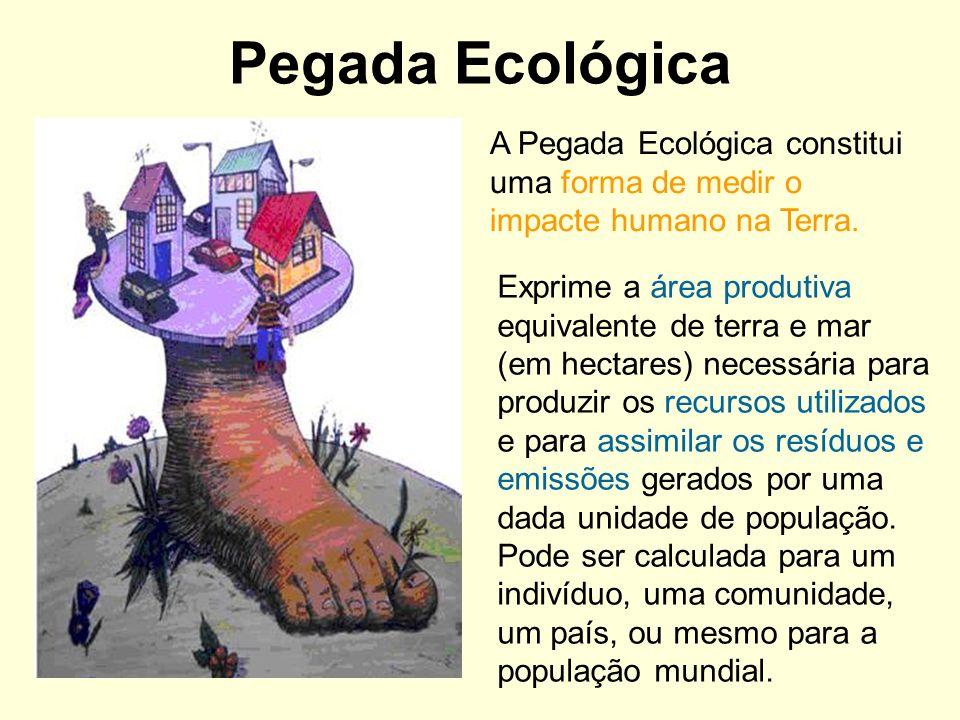 Pegada Ecológica A Pegada Ecológica constitui uma forma de medir o impacte humano na Terra. Exprime a área produtiva equivalente de terra e mar (em he