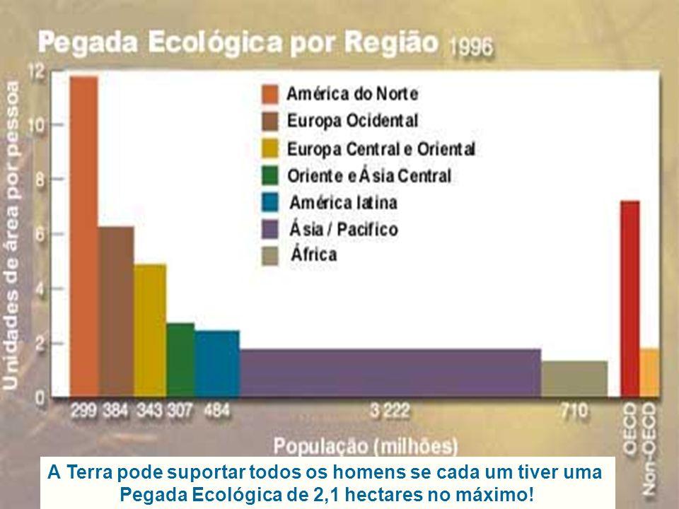 Pegada Ecológica Em média, cada pessoa em Portugal consome actualmente recursos equivalentes a 5,1 hectares Terra, ou seja, se toda a população mundial vivesse como nós, precisaríamos de um planeta quase duas vezes e meia maior do que a Terra para sobrevivermos todos.