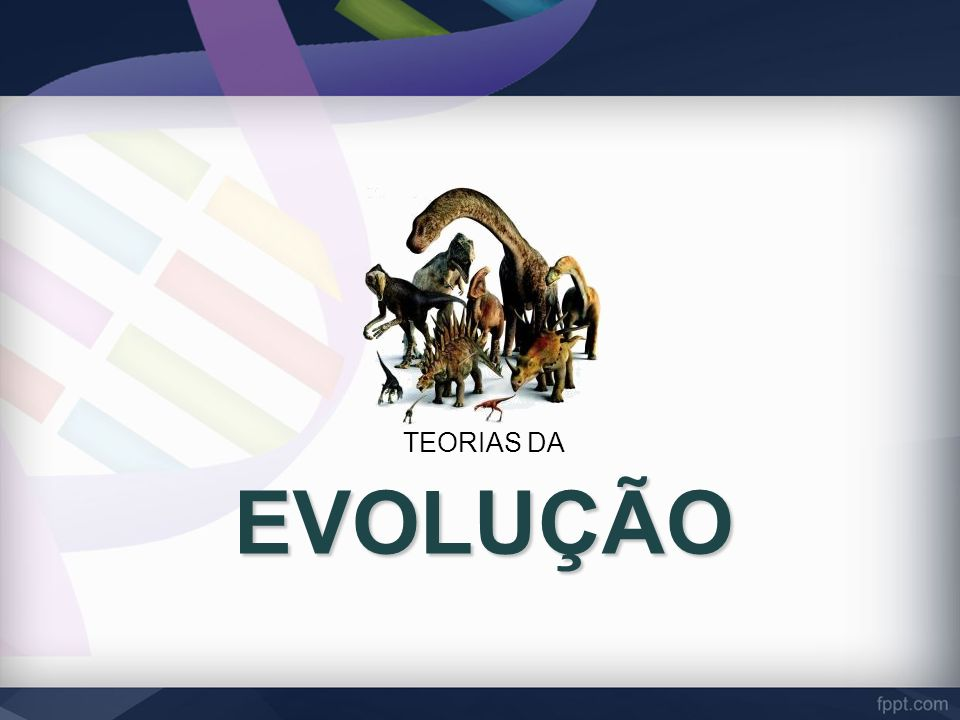 EVOLUÇÃO TEORIAS DA
