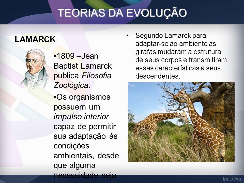 TEORIAS DA EVOLUÇÃO LAMARCK 1809 –Jean Baptist Lamarck publica Filosofia Zoológica. Os organismos possuem um impulso interior capaz de permitir sua ad
