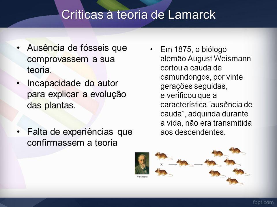 Críticas à teoria de Lamarck Ausência de fósseis que comprovassem a sua teoria. Incapacidade do autor para explicar a evolução das plantas. Falta de e