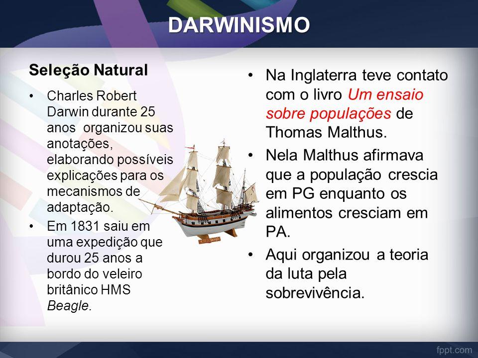 DARWINISMO Seleção Natural Charles Robert Darwin durante 25 anos organizou suas anotações, elaborando possíveis explicações para os mecanismos de adap