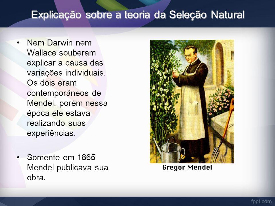 Explicação sobre a teoria da Seleção Natural Nem Darwin nem Wallace souberam explicar a causa das variações individuais. Os dois eram contemporâneos d