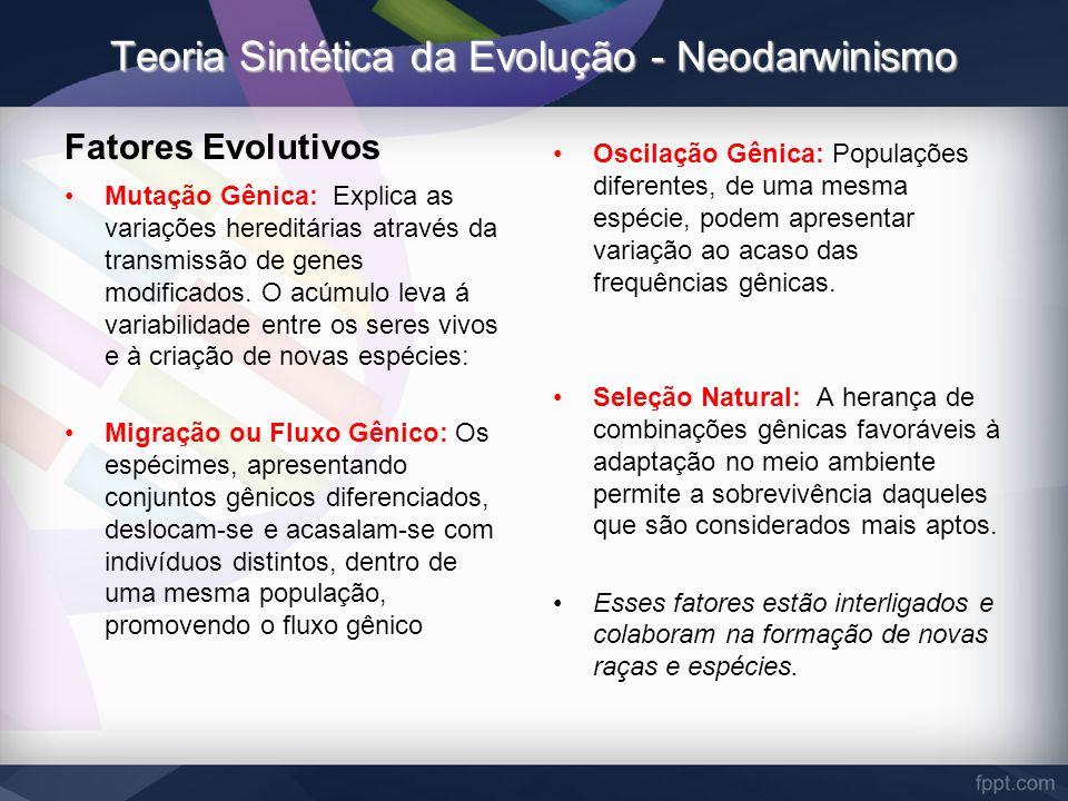 Teoria Sintética da Evolução - Neodarwinismo Fatores Evolutivos Mutação Gênica: Explica as variações hereditárias através da transmissão de genes modi