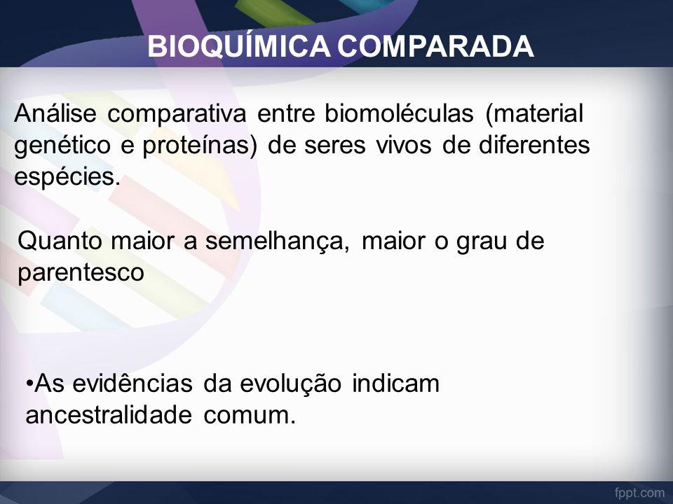 BIOQUÍMICA COMPARADA Análise comparativa entre biomoléculas (material genético e proteínas) de seres vivos de diferentes espécies. Quanto maior a seme