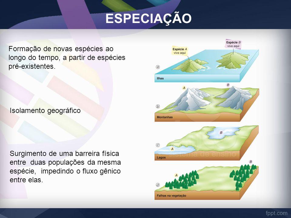 ESPECIAÇÃO Formação de novas espécies ao longo do tempo, a partir de espécies pré-existentes. Isolamento geográfico Surgimento de uma barreira física