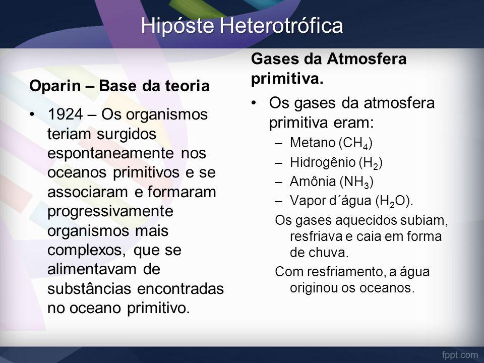 Hipóste Heterotrófica Oparin – Base da teoria 1924 – Os organismos teriam surgidos espontaneamente nos oceanos primitivos e se associaram e formaram p