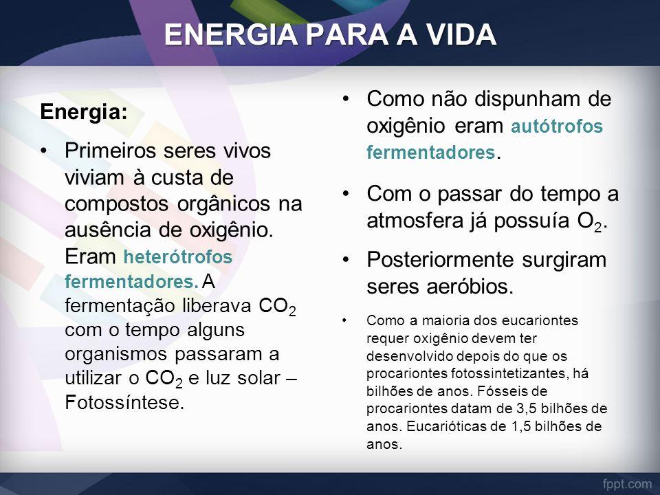ENERGIA PARA A VIDA Energia: Primeiros seres vivos viviam à custa de compostos orgânicos na ausência de oxigênio. Eram heterótrofos fermentadores. A f