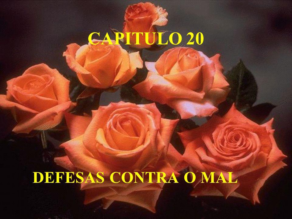 CAPITULO 20 DEFESAS CONTRA O MAL
