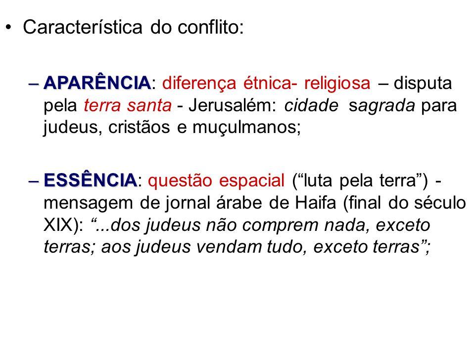 Característica do conflito: –APARÊNCIA –APARÊNCIA: diferença étnica- religiosa – disputa pela terra santa - Jerusalém: cidade sagrada para judeus, cri