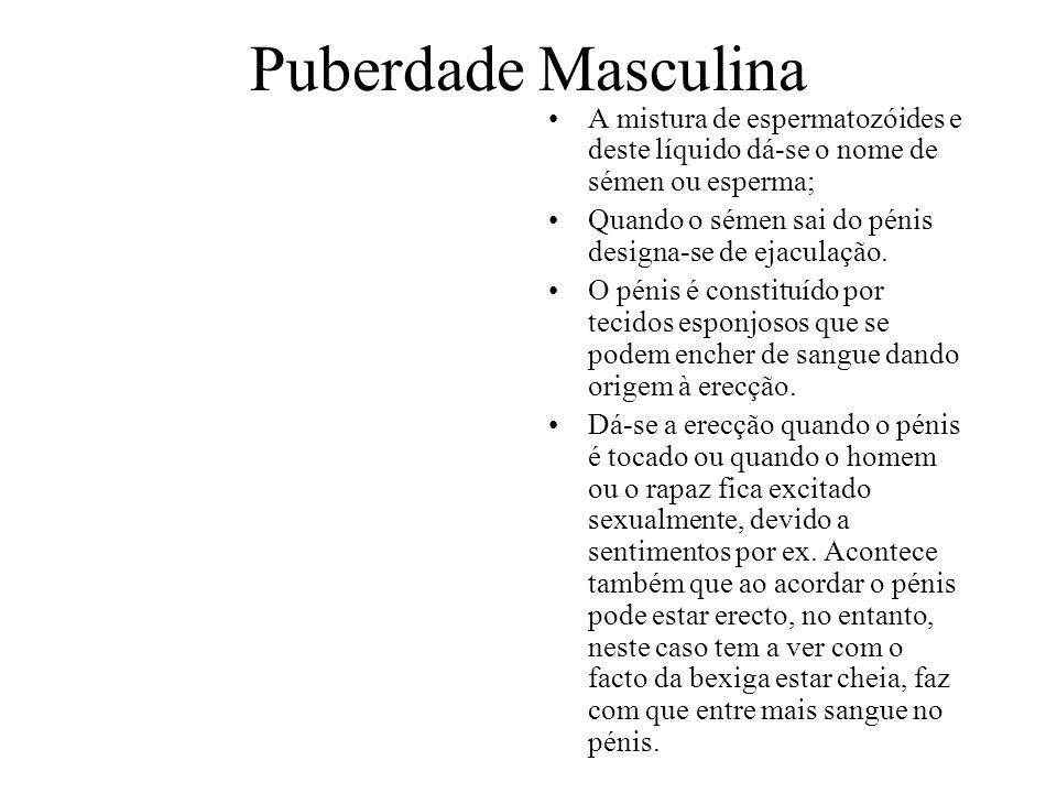 Puberdade Masculina A mistura de espermatozóides e deste líquido dá-se o nome de sémen ou esperma; Quando o sémen sai do pénis designa-se de ejaculaçã
