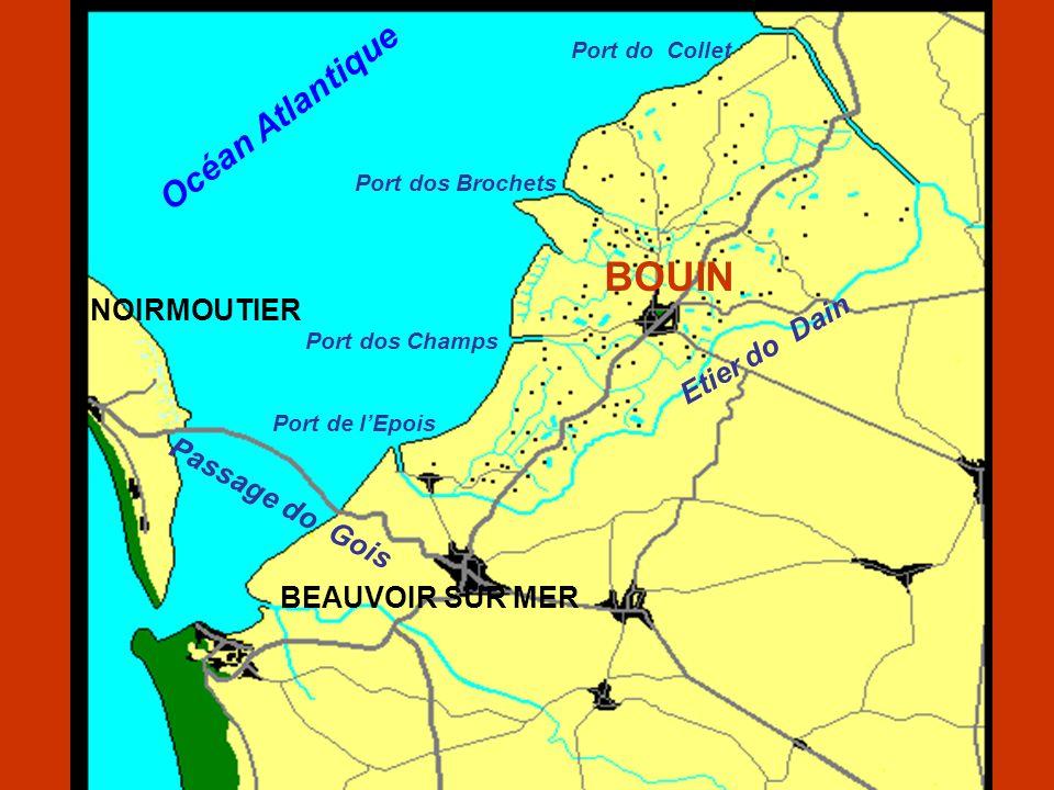 Este levantamento caligrafado manuscrito relata, portanto,as causas de falecimento no município de Bouin no período de 1908 a 1920, inclusive.