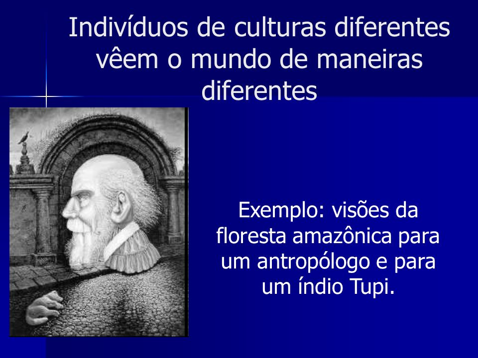 Indivíduos de culturas diferentes vêem o mundo de maneiras diferentes Exemplo: visões da floresta amazônica para um antropólogo e para um índio Tupi.