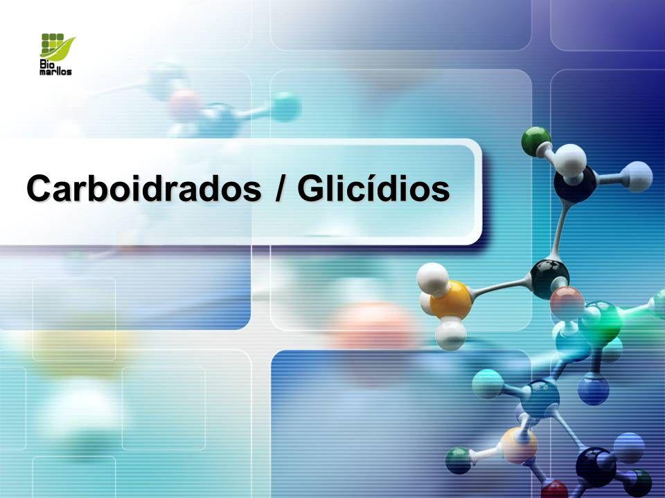 Carboidrados / Glicídios