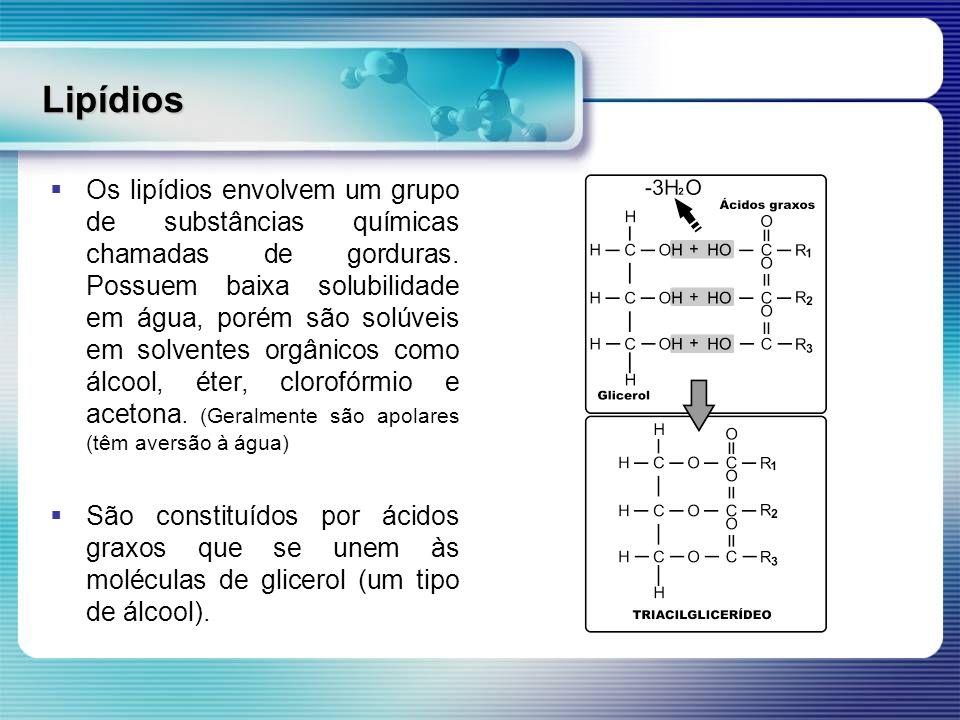Lipídios Os lipídios envolvem um grupo de substâncias químicas chamadas de gorduras. Possuem baixa solubilidade em água, porém são solúveis em solvent